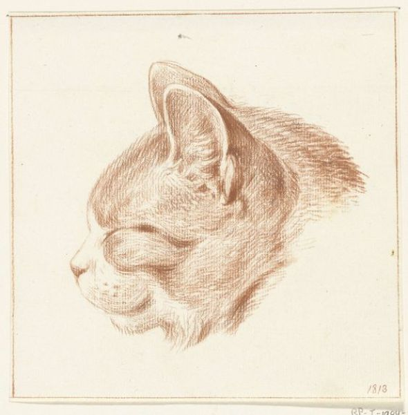 Ginger Cat Head Facing Right, Jean Bernard 1775-1833