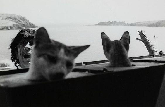 Salvador Dalí by Monique Jacot, Port Lligat, 1966. cats