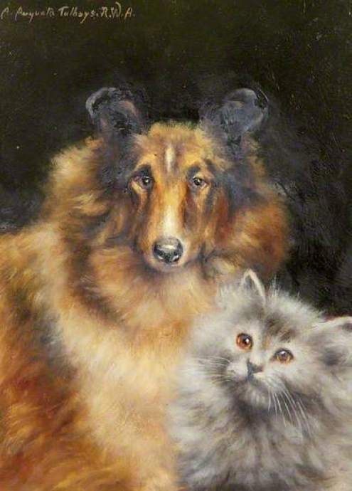 A Study of a Collie and a Cat, Agnes Augusta Talboys