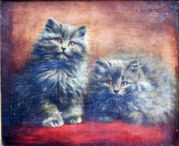 Two grey Persian kittens, Agnes Augusta Talboys private collection