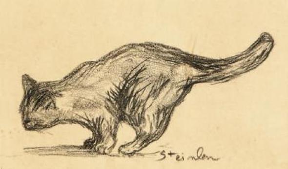 Cat Sketch, Theophile Steinlen