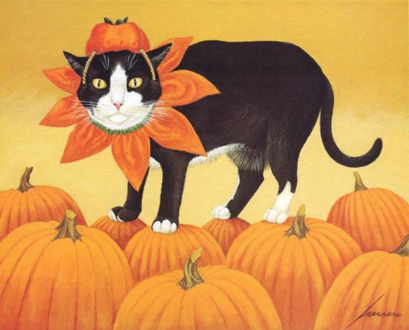 Pumpkin Cat, Lowell Herrero