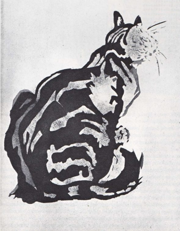 Seated Cat, Theophile Steinlen