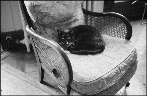 Ferdinando Scianna, FRANCE, Paris. HCB's cat.