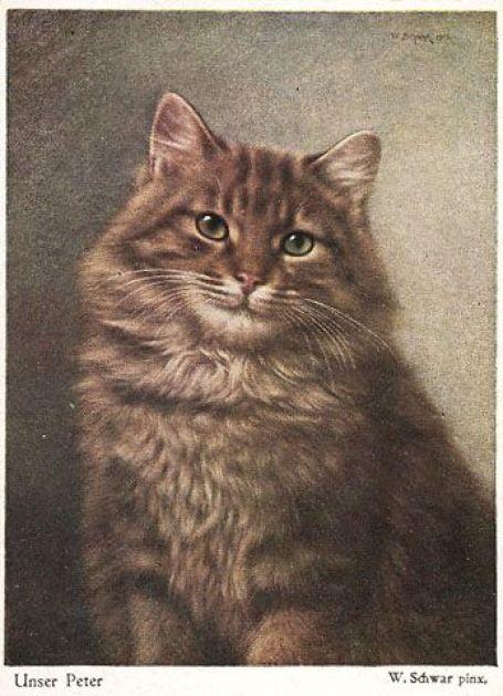 Our Peter, Wilhelm Schwar