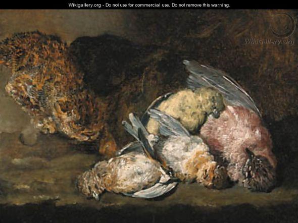 A Cat Stalking Dead Songbirds on a Ledge, Jan Fyt