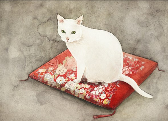 Midori Yamada13-white cat