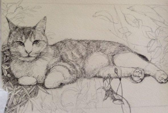 Midori Yamada16-Cat Lying Down