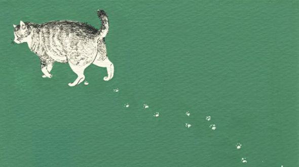 Midori Yamada23-Cat with cat prints