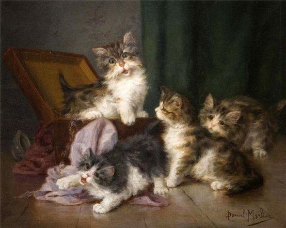 Cat Family, Daniel Merlin