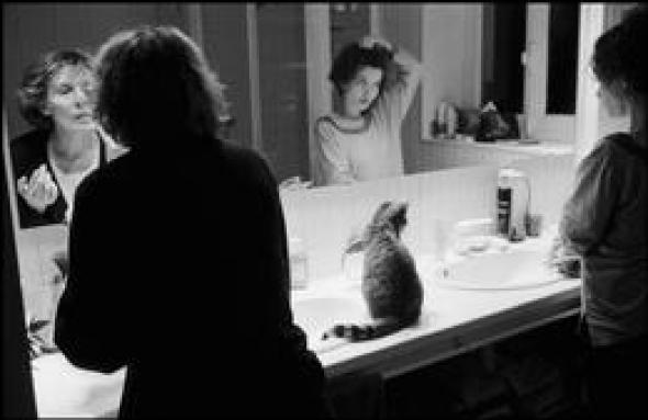 Jean Gaumy, Kitten 1999