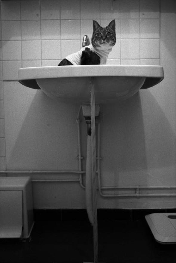 Jean Gaumy Zoe in the Sink, 1997