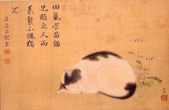 Sleeping cat, Hishida Shunso