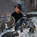 Claudia Cardinale and cats, famous cat lovers