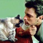 Nathan Fillion and cat, famous cat lovers