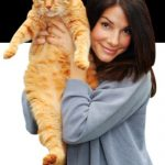 Sandra Bullock and cat, famous cat lovers