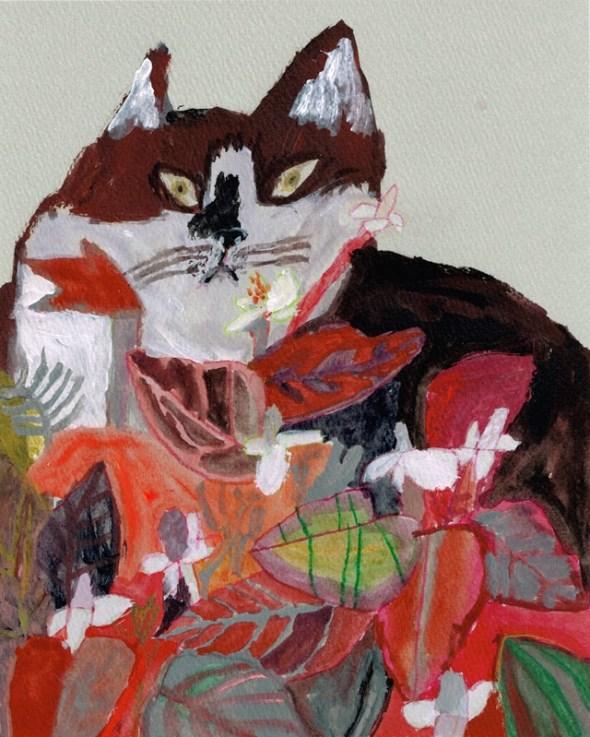 -Miroco Machiko, Cat