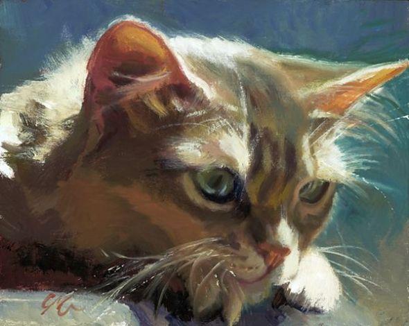 C.M. Cooper cats