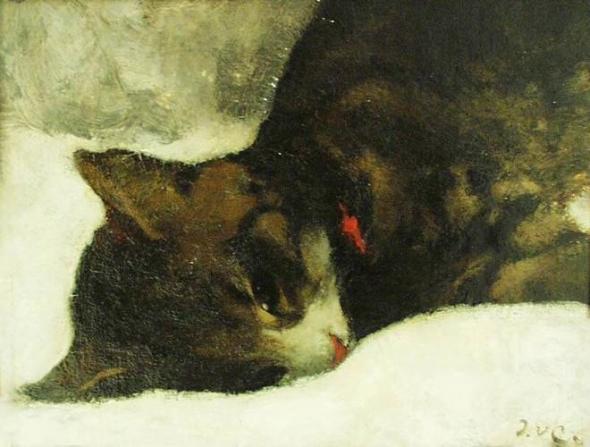 Dead Cat, Jacobus van Looy
