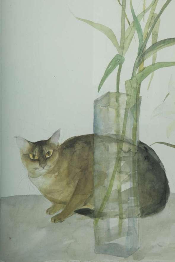 Cat and Lilies, Elizabeth Blackadder