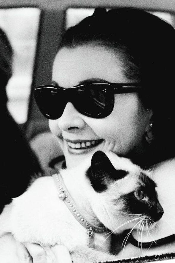 Vivian Leigh with a Siamese cat