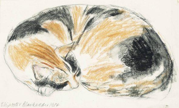 Elizabeth Blackadder, Sleeping Cat