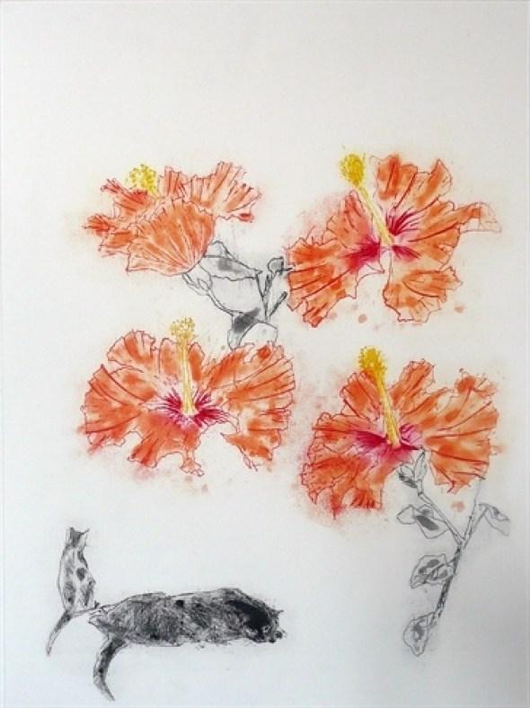 Hibiscus Cats Elizabeth Blackadder