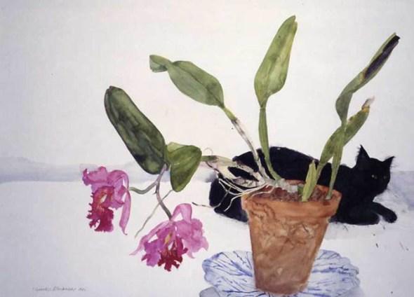 Black Cat and Plant, Elizabeth Blackadder