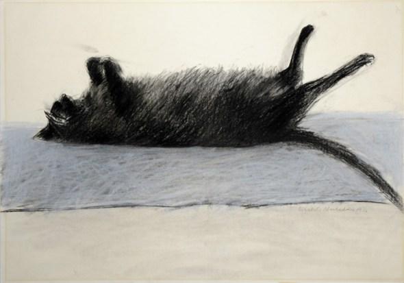 Amelia, Black Cat Sleeping, Elizabeth Blackadder