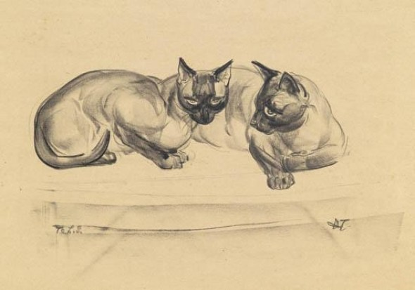 Agnes Tait, Two Siamese cats