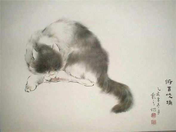 Gu Yingzhi, Sleeping Cat, Chinese