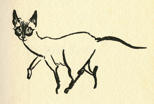 James Mason Cat Illustration 6