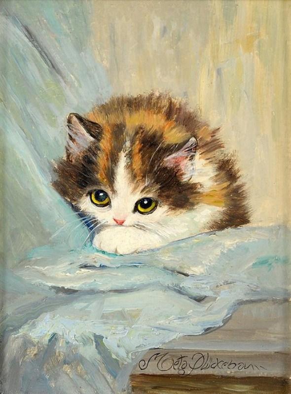 Kitten on Blue. Meta Pluckebaum