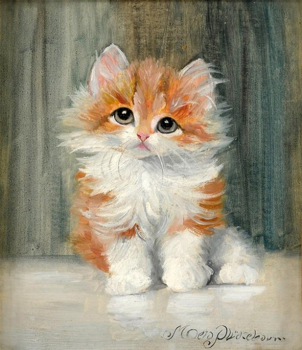 Orange and White Kitten, Meta Pluckebaum