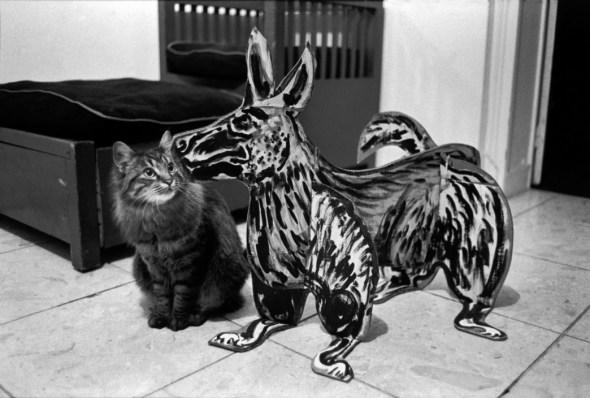 A cat and a Sculpture of a Dog, 1987, Richard Kalvar