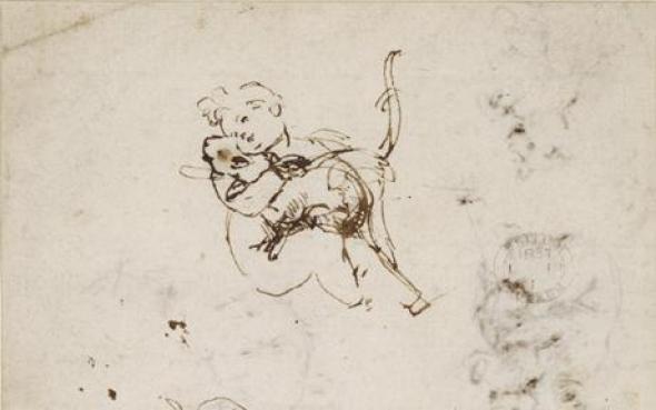 Studies of an Iinfant Christ with a Cat, Leonardo da Vinci