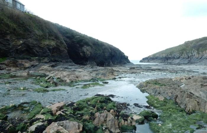 Cove at low tide