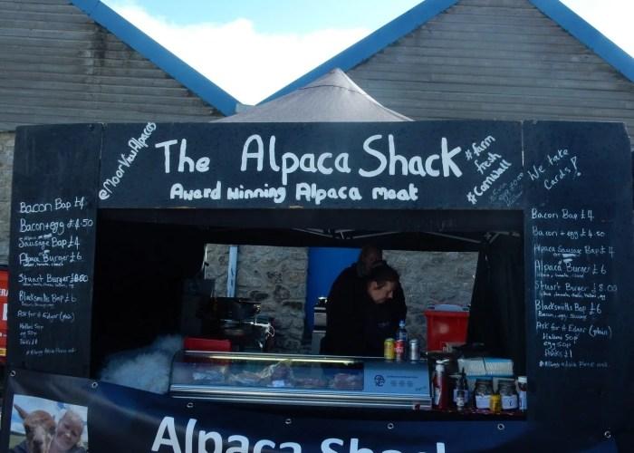 Alpaca Shack Porthleven Food Festival