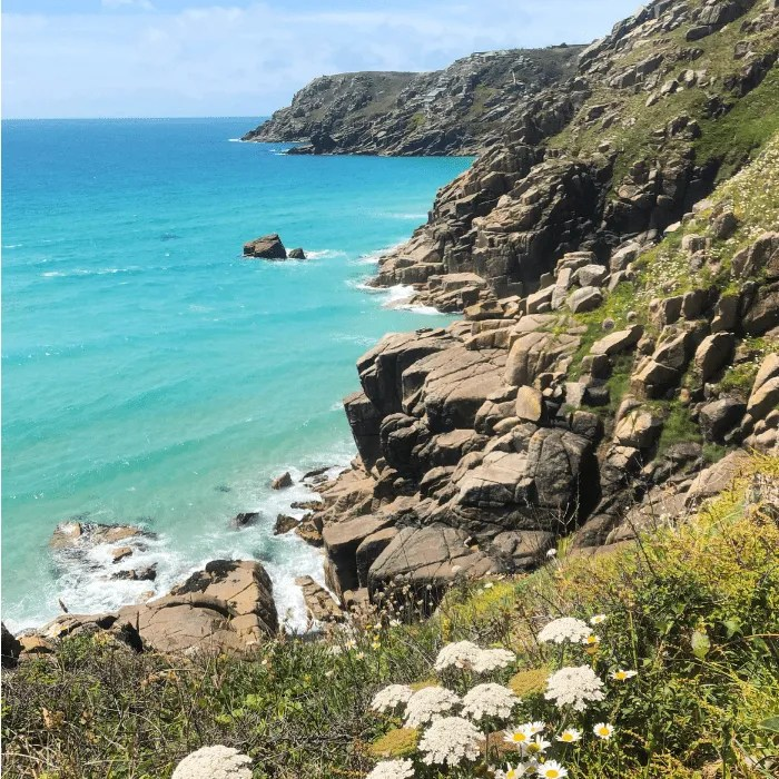 Treen cliffs and the sea and coastal flowers