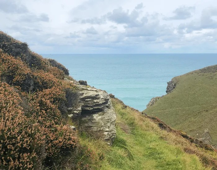 The sea with autumn heather and coast path on a cloudy day.