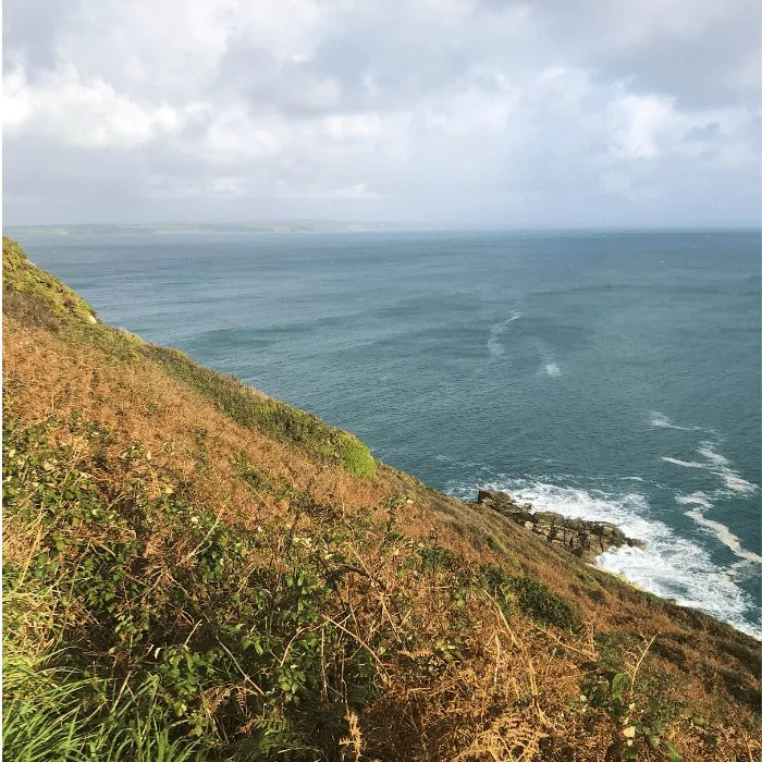 The grass and cliffs overlooking the sea