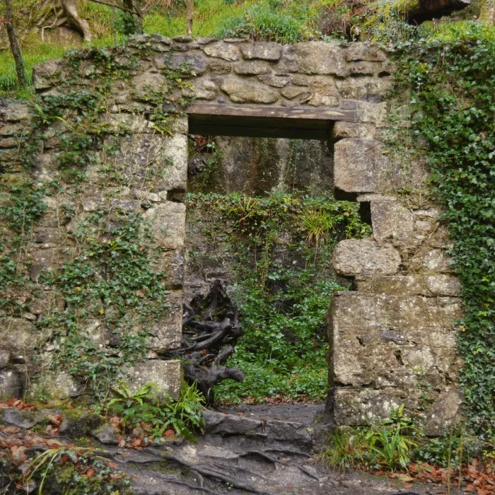 the doorway of a ruined building with moss and foliage