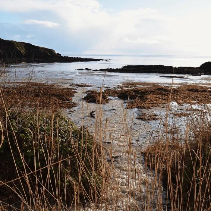 Polridmouth Beach near Fowey, Cornwall