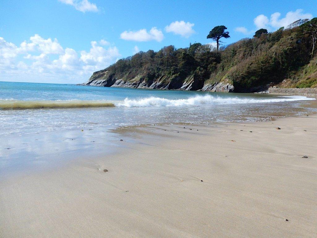 Porthluncy Beach at Caerhays