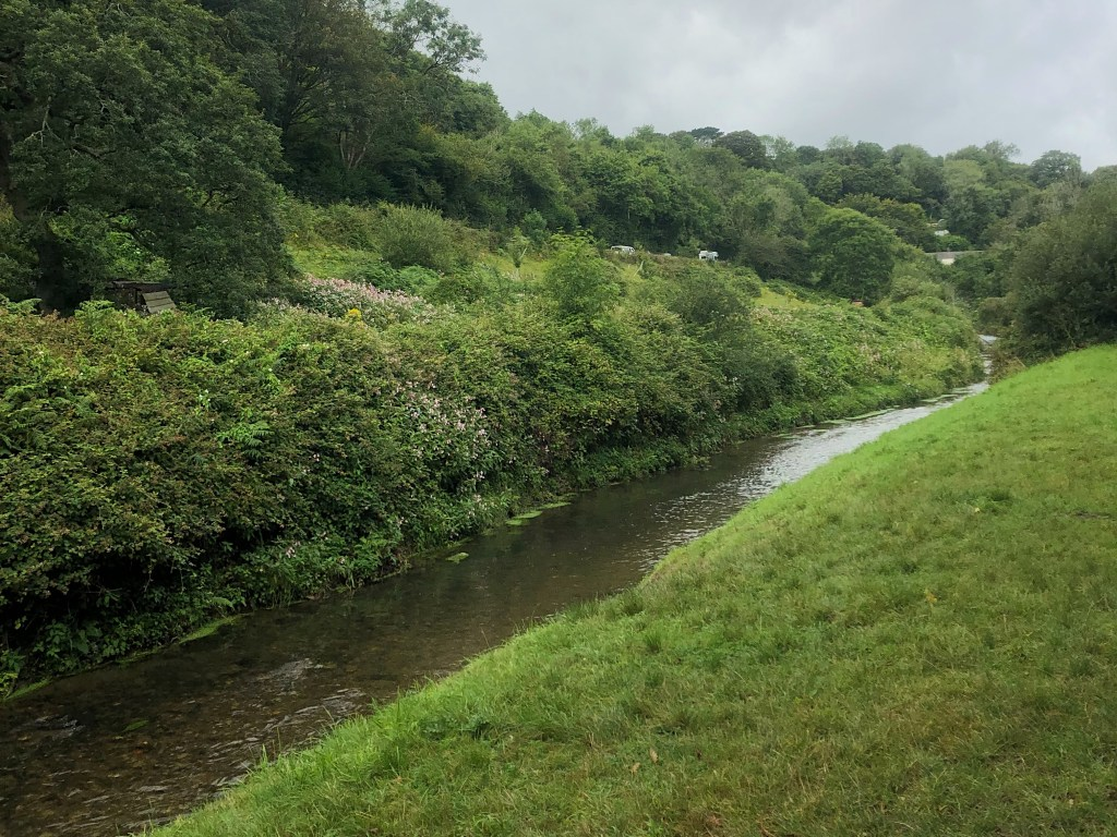 St Austell River and grassy bank on The Pentewan Trail
