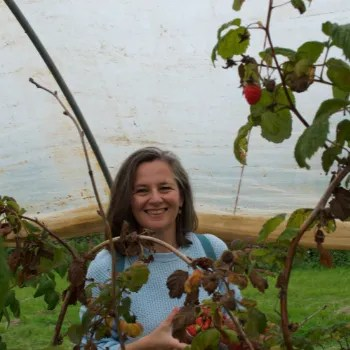 Penny from The Great Cornish Outdoors picking raspberries at Mitchell Fruit Farm