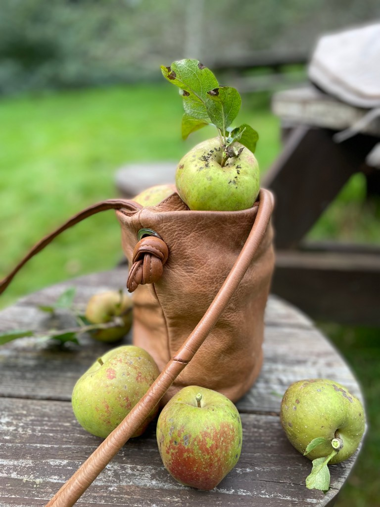 freshly picked apples in a small brownl eather bag on a wooden bench