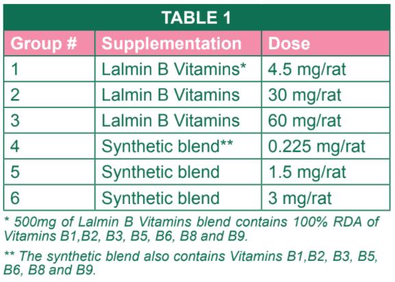 維生素B群-吸收