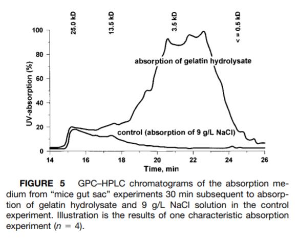 水解膠原蛋白、二胜肽、小分子膠原蛋白差別比較