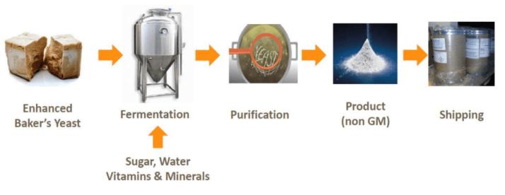 酵母萃取白藜蘆醇